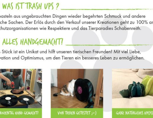 Offene Upcycling und Kreativwerkstatt f.d. Tierschutz Otelo Linz