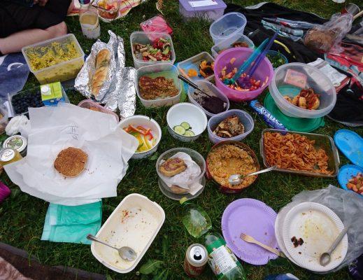 Veganes Picknick @Linzer Donaulände