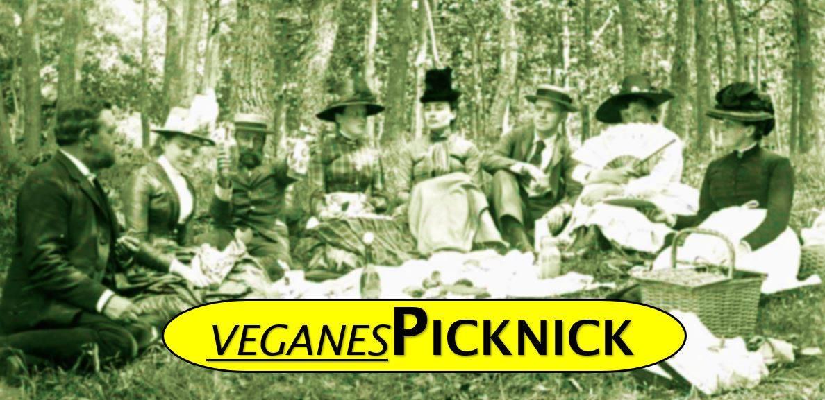 Veganes Picknick